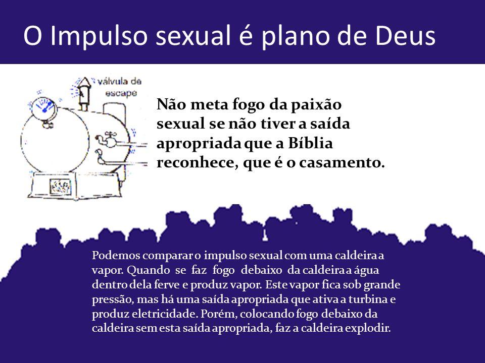 O Impulso sexual é plano de Deus Não meta fogo da paixão sexual se não tiver a saída apropriada que a Bíblia reconhece, que é o casamento.