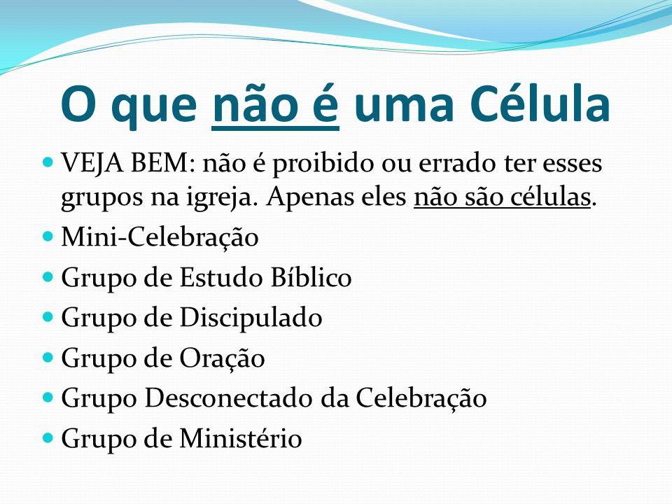 O que não é uma Célula VEJA BEM: não é proibido ou errado ter esses grupos na igreja. Apenas eles não são células. Mini-Celebração Grupo de Estudo Bíb