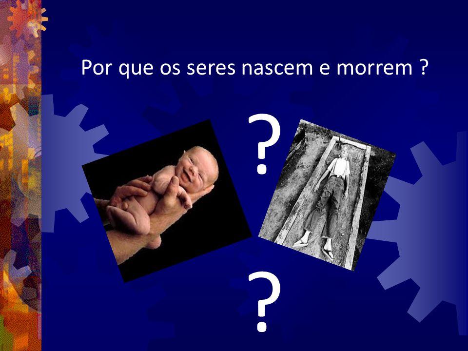 Por que os seres nascem e morrem ? ? ?