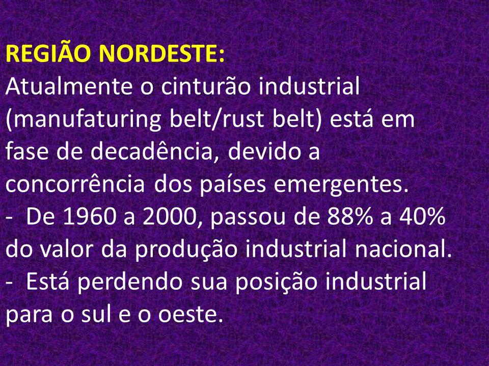 REGIÃO NORDESTE: Atualmente o cinturão industrial (manufaturing belt/rust belt) está em fase de decadência, devido a concorrência dos países emergentes.