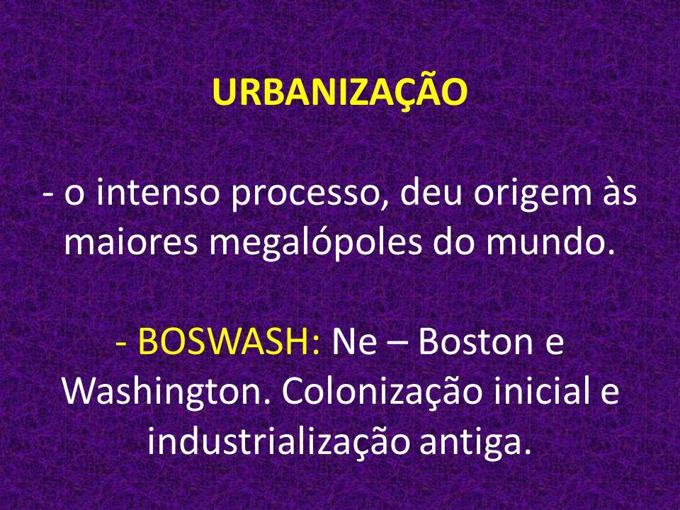 URBANIZAÇÃO - o intenso processo, deu origem às maiores megalópoles do mundo.