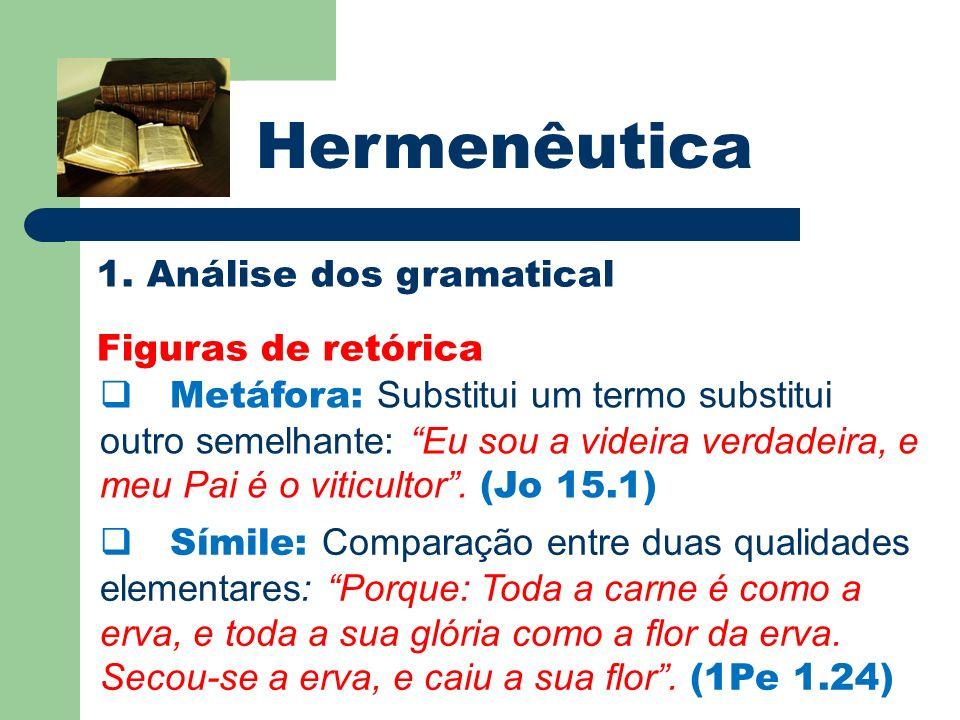 Hermenêutica 1. Análise dos gramatical Figuras de retórica Metáfora: Substitui um termo substitui outro semelhante: Eu sou a videira verdadeira, e meu