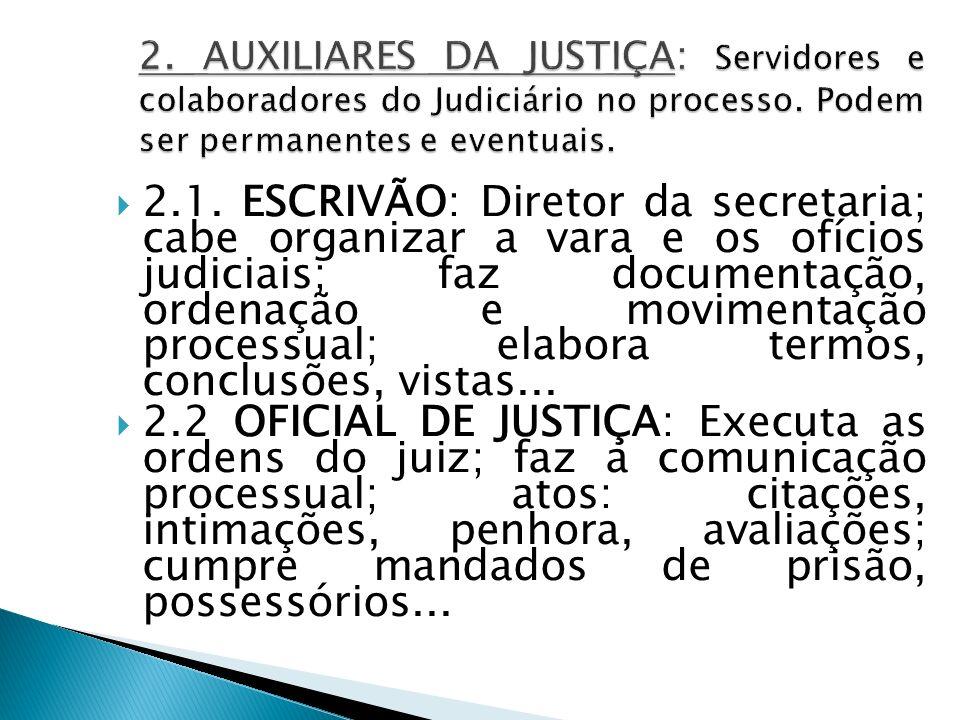 2.1. ESCRIVÃO: Diretor da secretaria; cabe organizar a vara e os ofícios judiciais; faz documentação, ordenação e movimentação processual; elabora ter