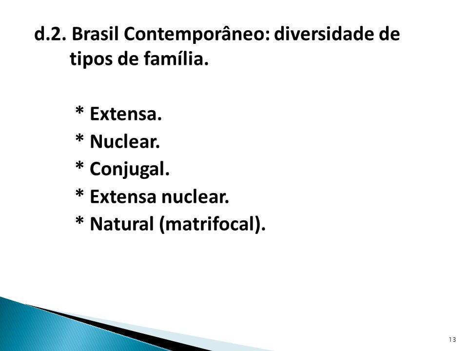 d.2.Brasil Contemporâneo: diversidade de tipos de família.
