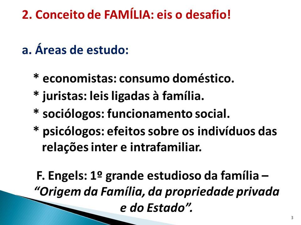 2.Conceito de FAMÍLIA: eis o desafio. a. Áreas de estudo: * economistas: consumo doméstico.