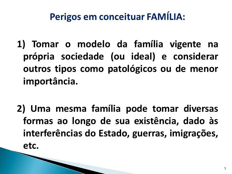Perigos em conceituar FAMÍLIA: 1) Tomar o modelo da família vigente na própria sociedade (ou ideal) e considerar outros tipos como patológicos ou de menor importância.
