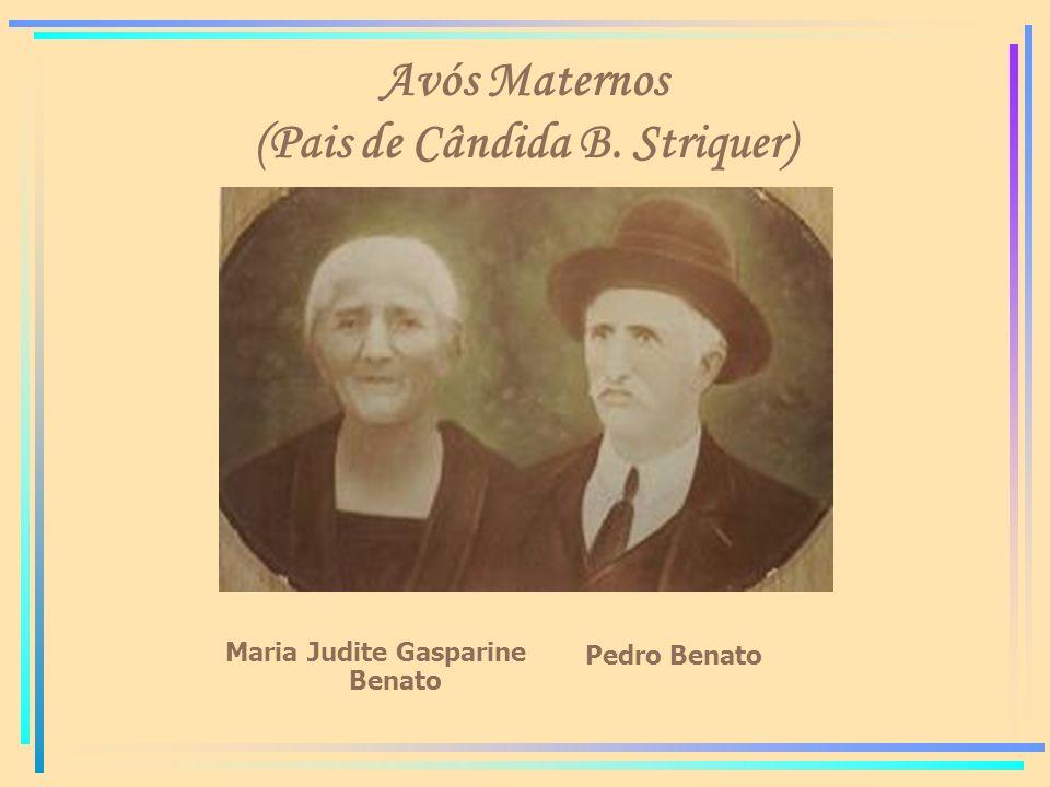 Avós Maternos (Pais de Cândida B. Striquer) Maria Judite Gasparine Benato Pedro Benato