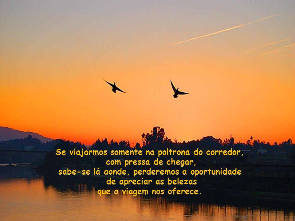 Creio que aos poucos, e mesmo sem perceber, deixamos de olhar pela janela da nossa vida. A vida também é uma viagem e se não nos sentarmos à janela,pe