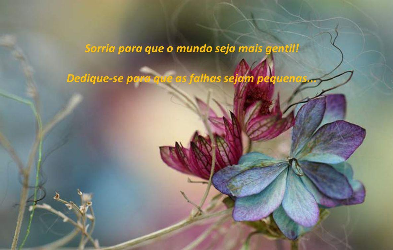 Texto – desconheço a autoria Música – Edelweiss-A.Rieu Imagens - Internet Formatação- Amélia Soares ameliasoares-55@hotmail.com