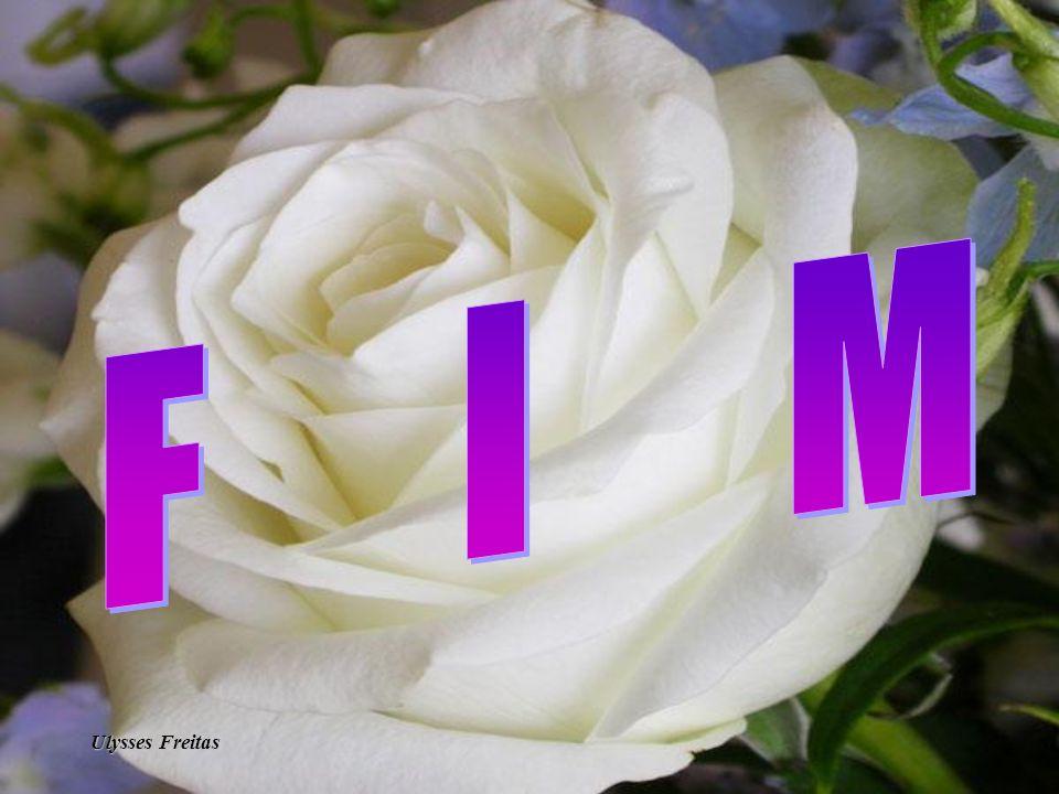 Ufreitas2007-rj@oi.com.br Formatação : Ulysses Freitas Texto: retirado da internet Ao tempo o tempo Silvia Schimidt Musica : Em algum lugar do passado Imagens: Internet Orkut : Ulysses Freitas MSN : ulysses_freitas468@hotmail.com http://www.ulyssesfreitas.xpg.com.br/