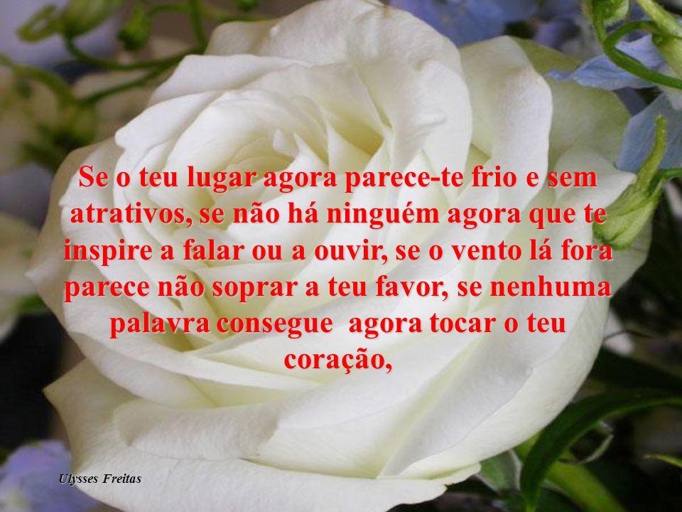 Ulysses Freitas
