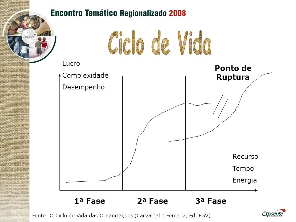 1ª Fase2ª Fase3ª Fase Ponto de Ruptura Lucro Complexidade Desempenho Recurso Tempo Energia Fonte: O Ciclo de Vida das Organizações (Carvalhal e Ferreira, Ed.