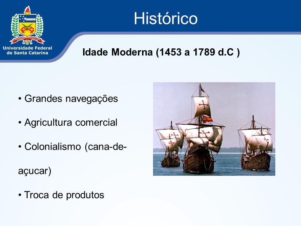 Histórico Idade Moderna (1453 a 1789 d.C ) Grandes navegações Agricultura comercial Colonialismo (cana-de- açucar) Troca de produtos