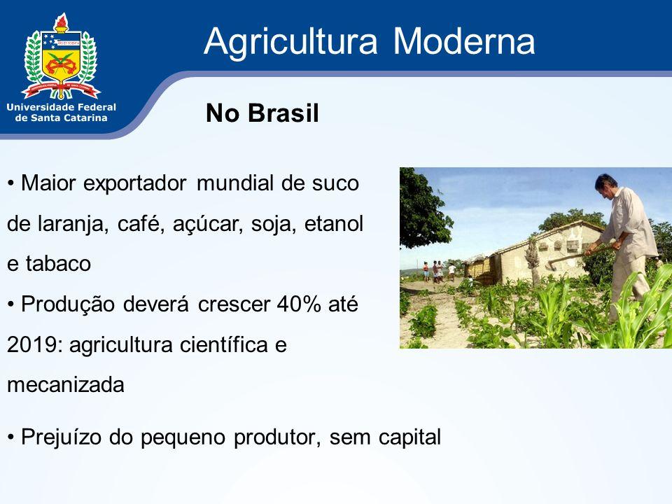 Agricultura Moderna Prejuízo do pequeno produtor, sem capital No Brasil Maior exportador mundial de suco de laranja, café, açúcar, soja, etanol e taba