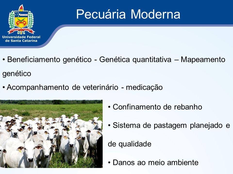 Pecuária Moderna Beneficiamento genético - Genética quantitativa – Mapeamento genético Acompanhamento de veterinário - medicação Confinamento de reban