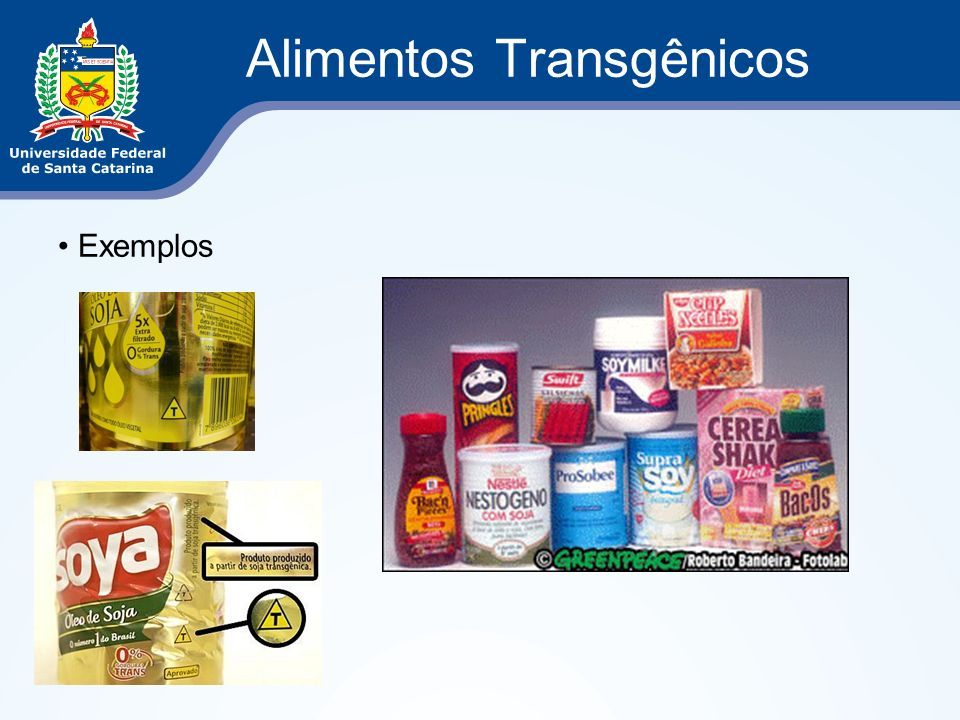 Alimentos Transgênicos Exemplos