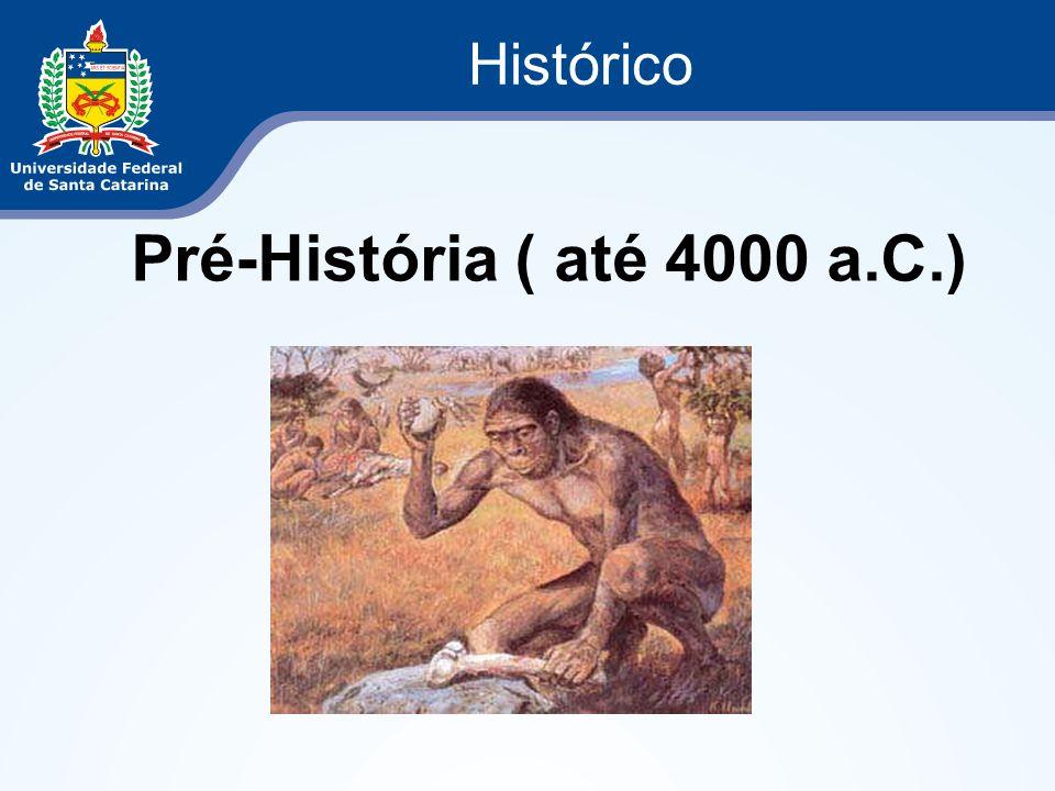 Histórico Paleolítico – 18000 a.C ( Idade da Pedra Lascada) Cavernas Caça Pesca Coleta de frutas e raízes Nomadismo motivado pela escassez