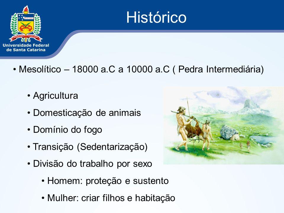 Histórico Mesolítico – 18000 a.C a 10000 a.C ( Pedra Intermediária) Agricultura Domesticação de animais Domínio do fogo Transição (Sedentarização) Div