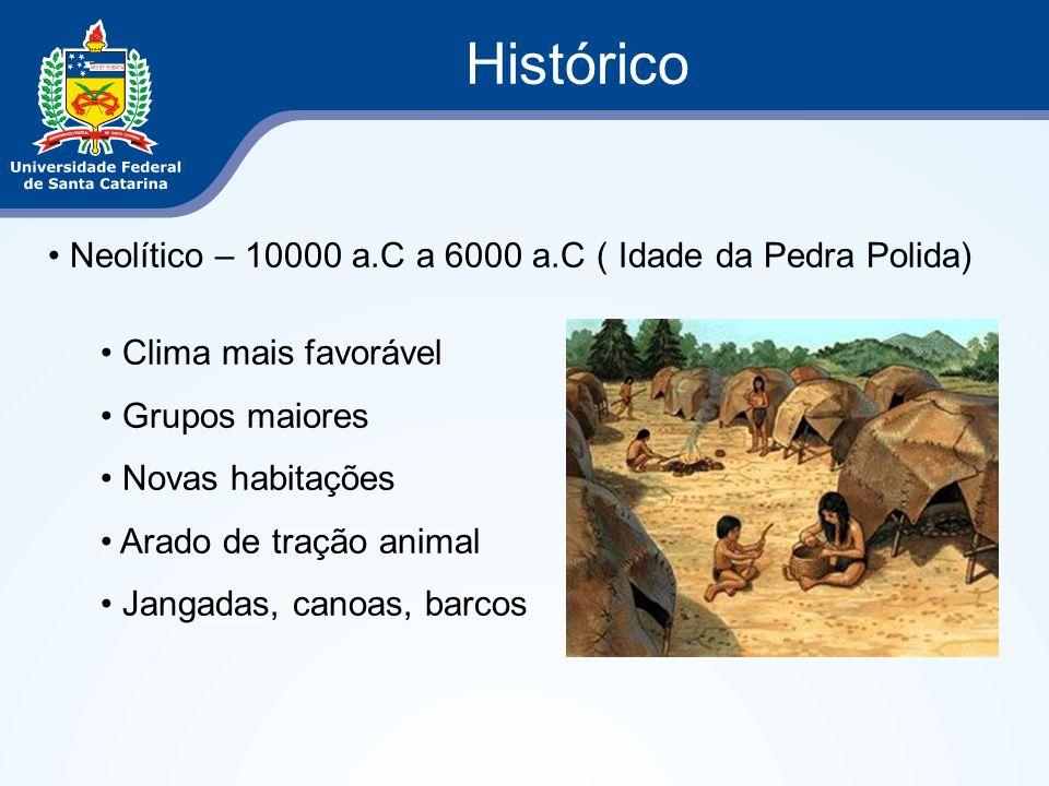 Histórico Neolítico – 10000 a.C a 6000 a.C ( Idade da Pedra Polida) Clima mais favorável Grupos maiores Novas habitações Arado de tração animal Jangad