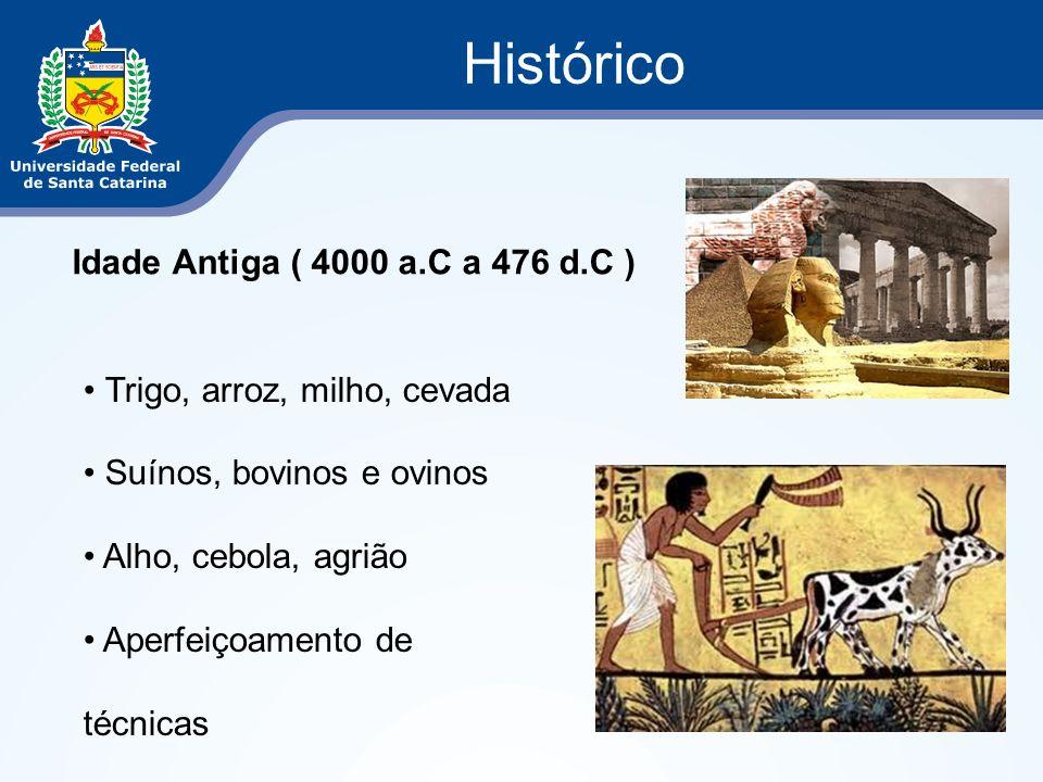 Histórico Idade Antiga ( 4000 a.C a 476 d.C ) Trigo, arroz, milho, cevada Suínos, bovinos e ovinos Alho, cebola, agrião Aperfeiçoamento de técnicas