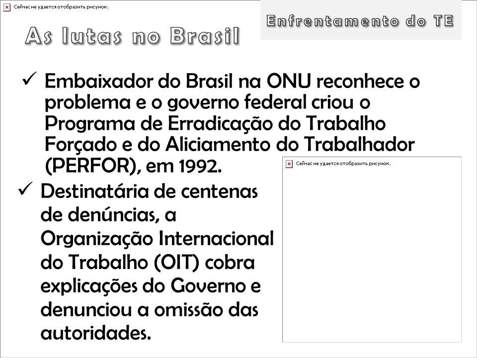 Embaixador do Brasil na ONU reconhece o problema e o governo federal criou o Programa de Erradicação do Trabalho Forçado e do Aliciamento do Trabalhad