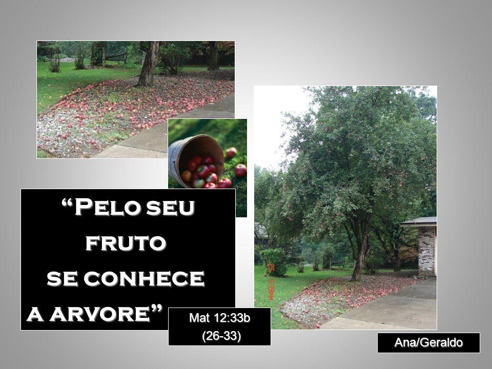Pelo seu fruto se conhece a arvore Mat 12:33b Mat 12:33b (26-33) (26-33) Ana/Geraldo