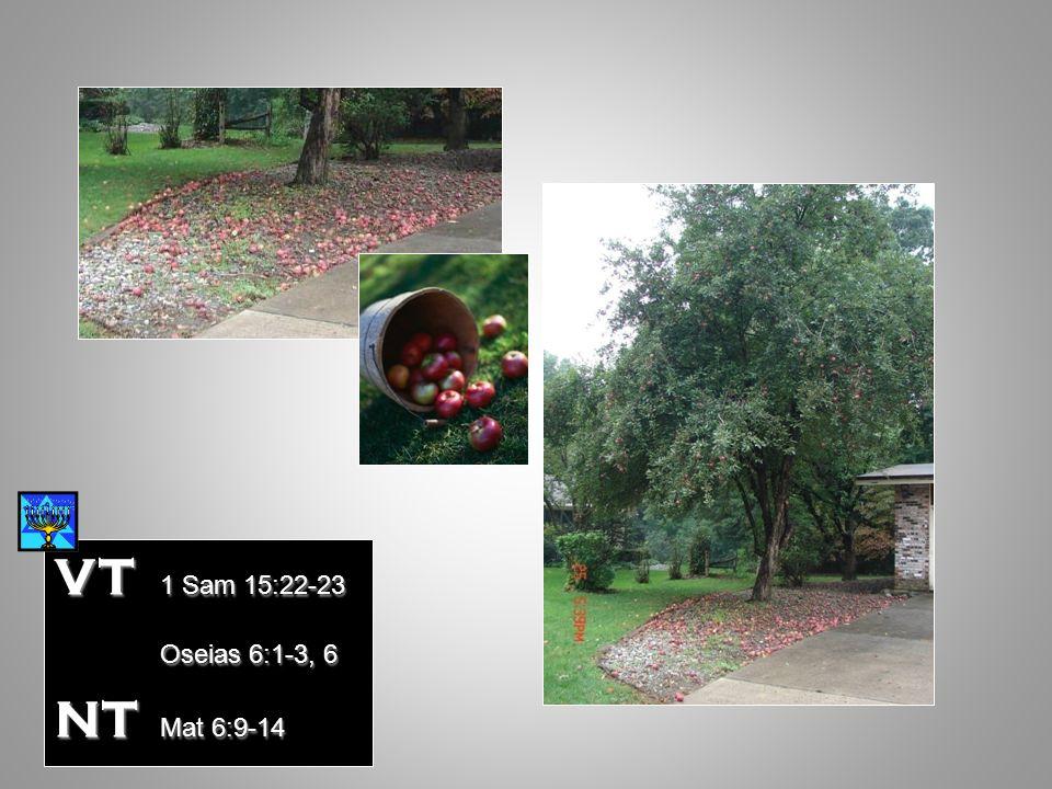 VT 1 Sam 15:22-23 Oseias 6:1-3, 6 NT Mat 6:9-14 Mat 12:7-13 Mat 12:7-13