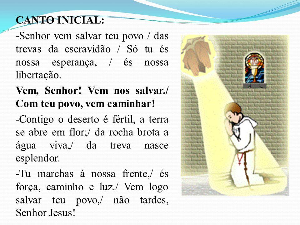 Dir.: Rezemos o salmo 96 que é um hino a realeza de Deus, que vem para estabelecer o seu reino de justiça.