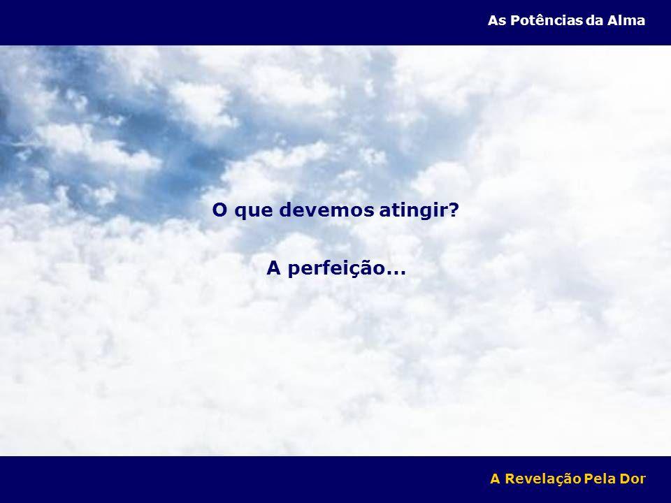 O que devemos atingir? A perfeição... A Revelação Pela Dor As Potências da Alma