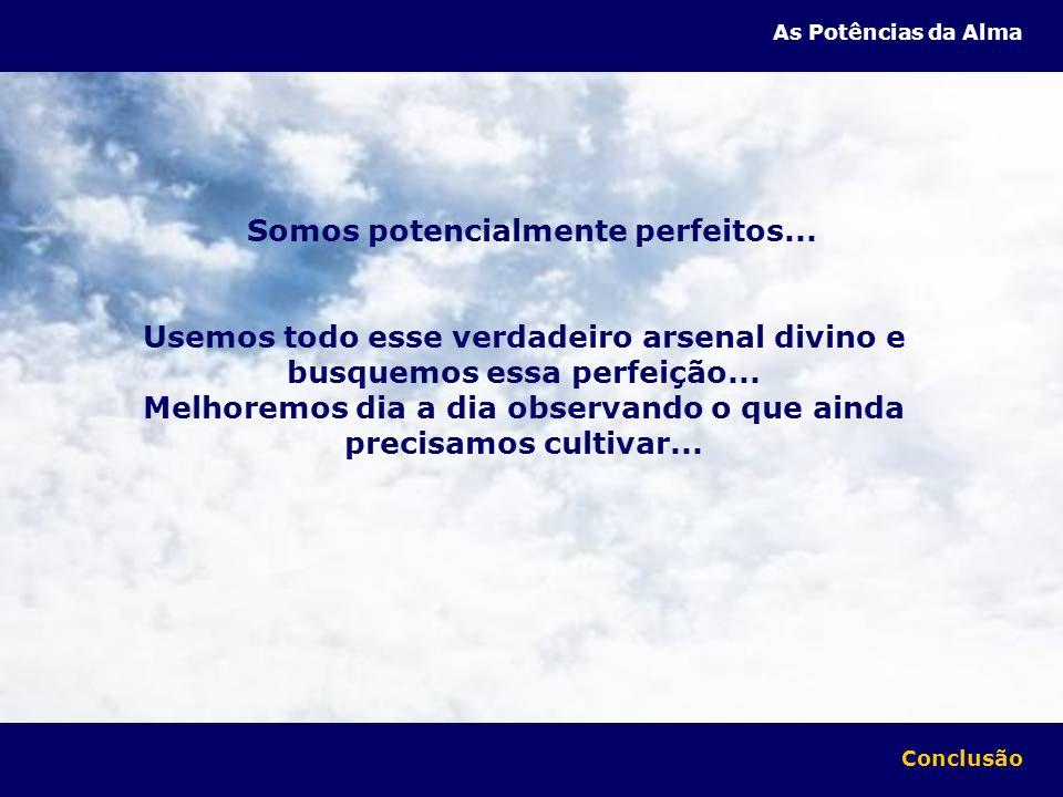 Somos potencialmente perfeitos... Usemos todo esse verdadeiro arsenal divino e busquemos essa perfeição... Melhoremos dia a dia observando o que ainda