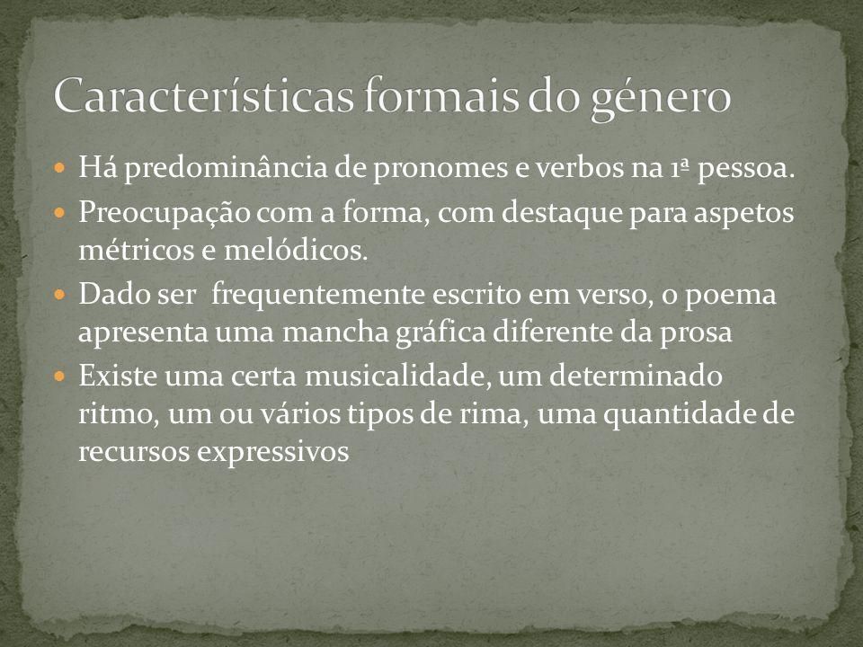 A análise da estrutura externa de uma poema diz respeito a aspetos formais do mesmo, por isso estrutura externa é equivalente a análise formal.
