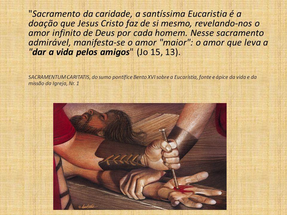 Minha missa é minha vida e minha vida é uma missa prolongada!. Santo Alberto Hurtado.