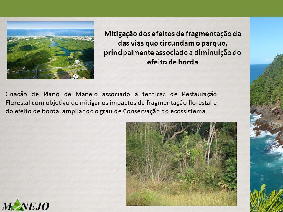 Criação de Plano de Manejo associado à técnicas de Restauração Florestal com objetivo de mitigar os impactos da fragmentação florestal e do efeito de