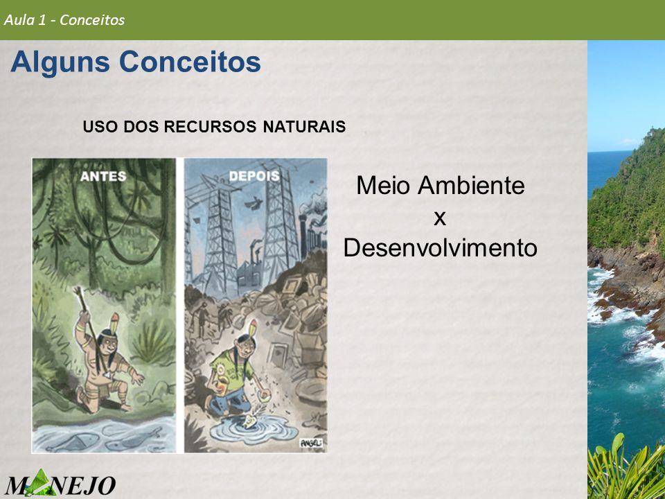 USO DOS RECURSOS NATURAIS Meio Ambiente x Desenvolvimento Aula 1 - Conceitos Alguns Conceitos