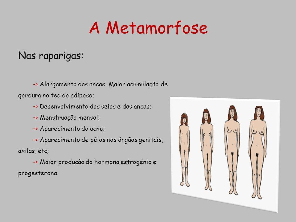 Nas raparigas: -> Alargamento das ancas. Maior acumulação de gordura no tecido adiposo; -> Desenvolvimento dos seios e das ancas; -> Menstruação mensa