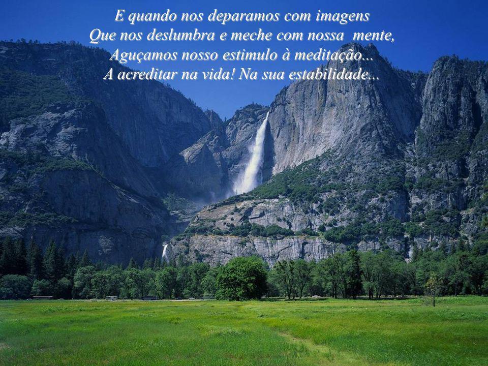 Admirar a natureza faz parte Do nosso ego. É assim que reverenciamos O Criador! Admirar a natureza faz parte Do nosso ego. É assim que reverenciamos O