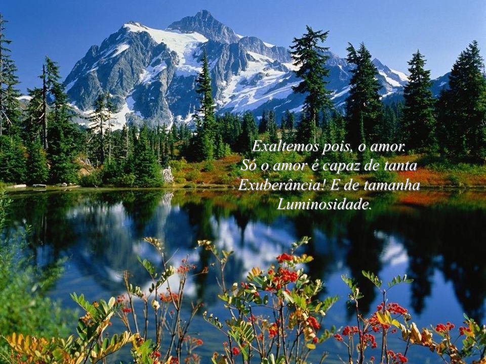 Não basta contemplar, admirar, é preciso Que vivamos com intensidade cada dia. Que saibamos apreciar, amar, O bom e o belo! A mãe natureza... Não bast