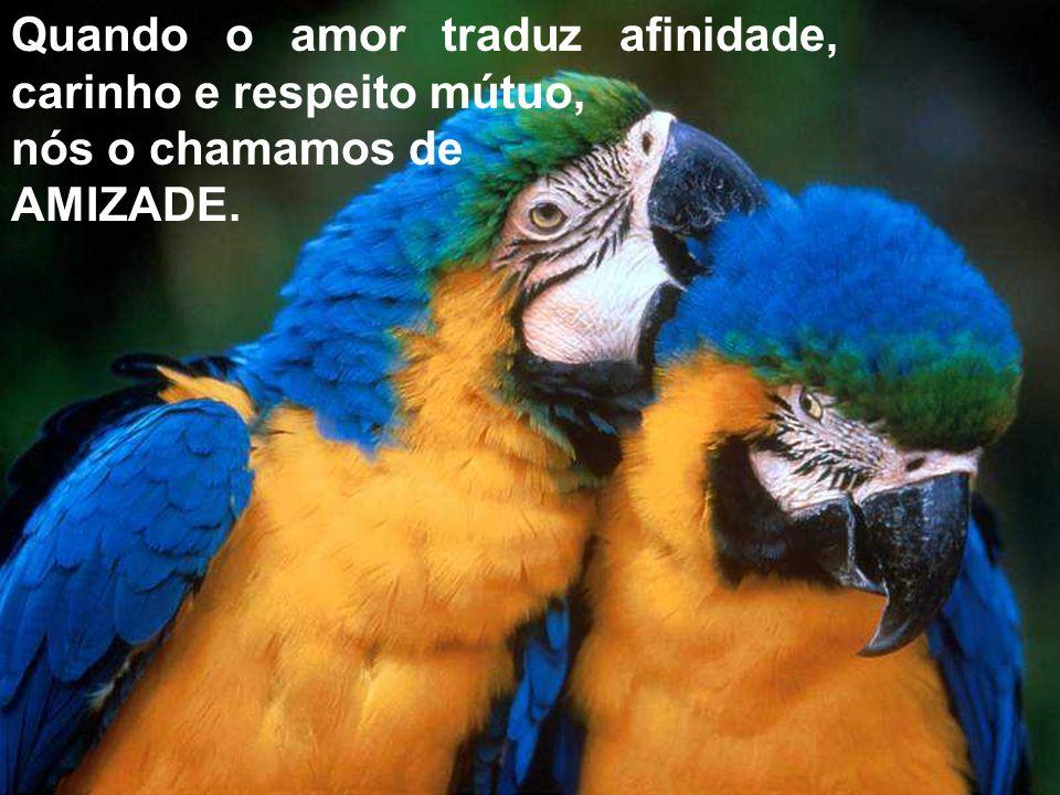 Quando o amor traduz afinidade, carinho e respeito mútuo, nós o chamamos de AMIZADE.