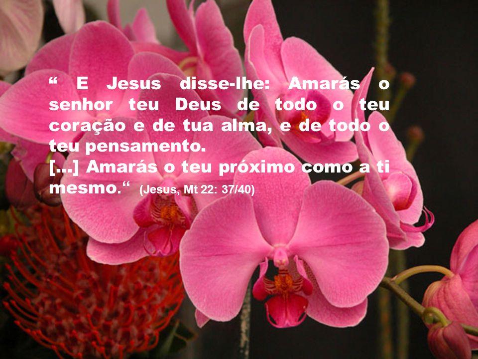 5 E Jesus disse-lhe: Amarás o senhor teu Deus de todo o teu coração e de tua alma, e de todo o teu pensamento. [...] Amarás o teu próximo como a ti me