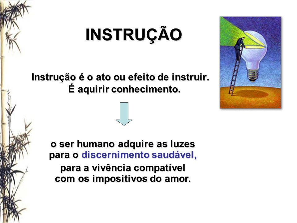 INSTRUÇÃO Instrução é o ato ou efeito de instruir. É aquirir conhecimento. É aquirir conhecimento. o ser humano adquire as luzes para o discernimento