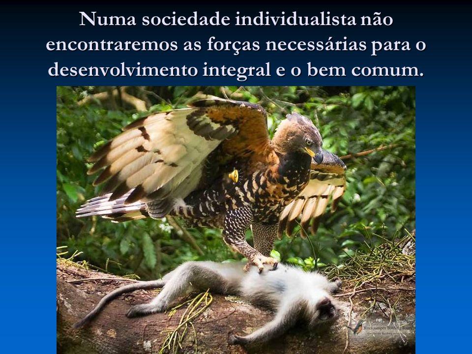 Numa sociedade individualista não encontraremos as forças necessárias para o desenvolvimento integral e o bem comum.