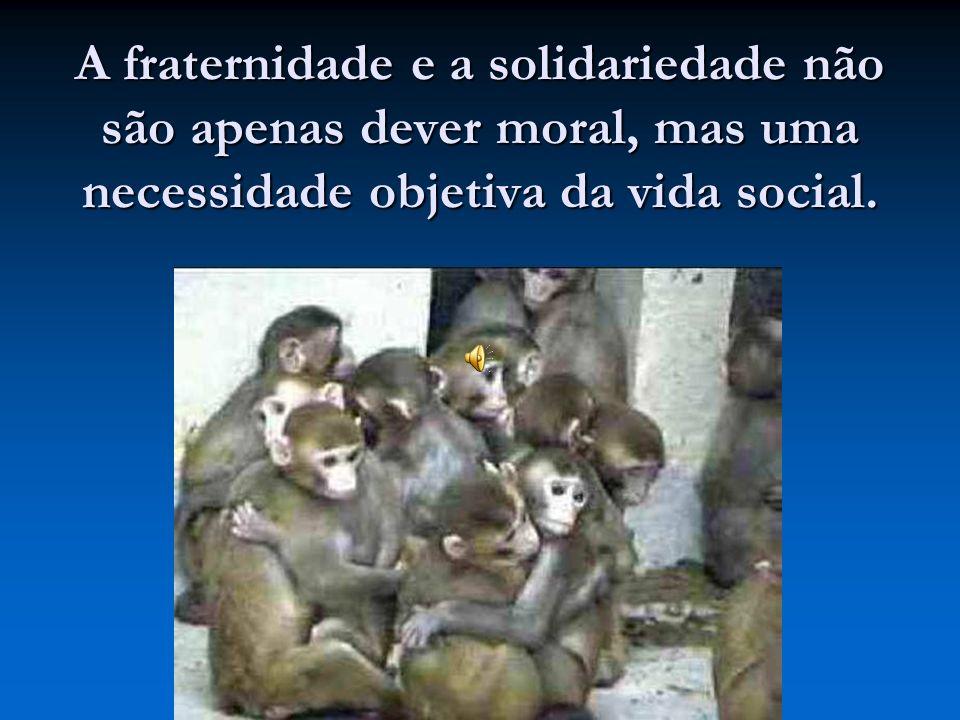 A fraternidade e a solidariedade não são apenas dever moral, mas uma necessidade objetiva da vida social.