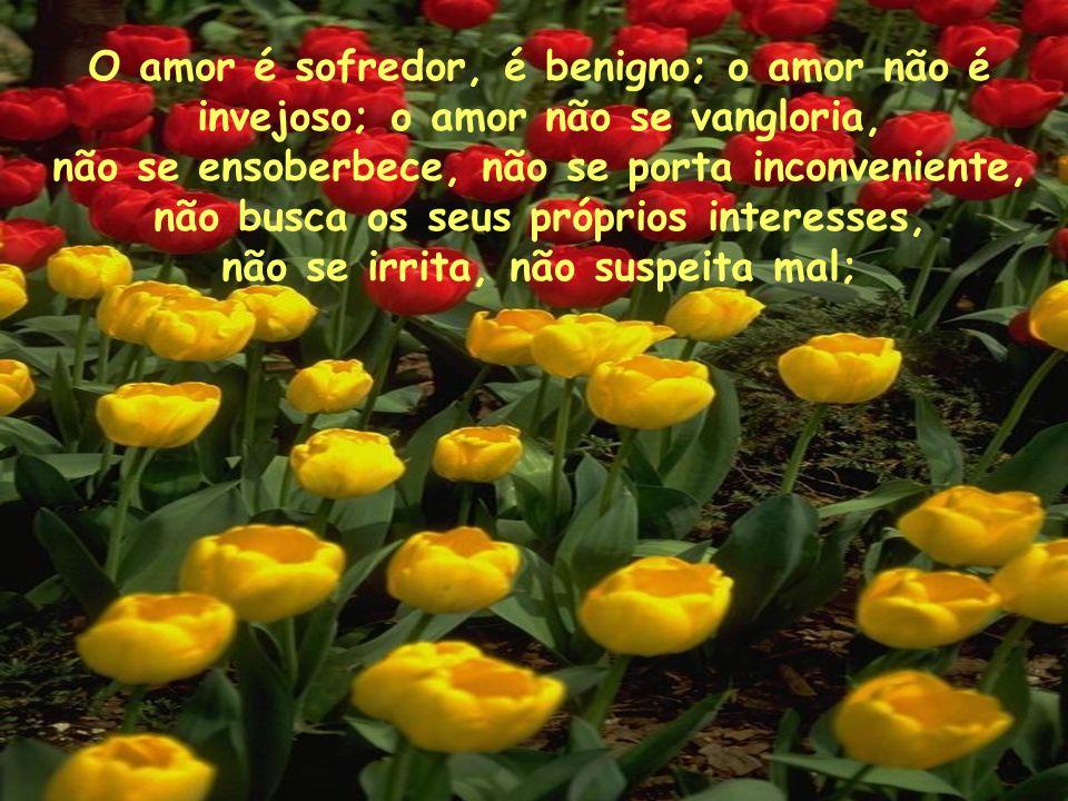 O amor é sofredor, é benigno; o amor não é invejoso; o amor não se vangloria, não se ensoberbece, não se porta inconveniente, não busca os seus própri
