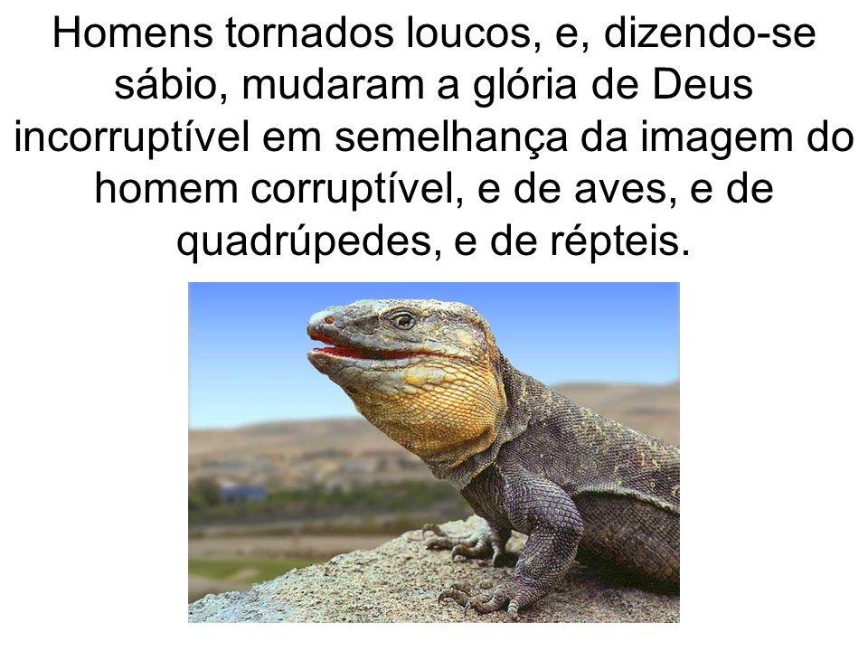 Homens tornados loucos, e, dizendo-se sábio, mudaram a glória de Deus incorruptível em semelhança da imagem do homem corruptível, e de aves, e de quad