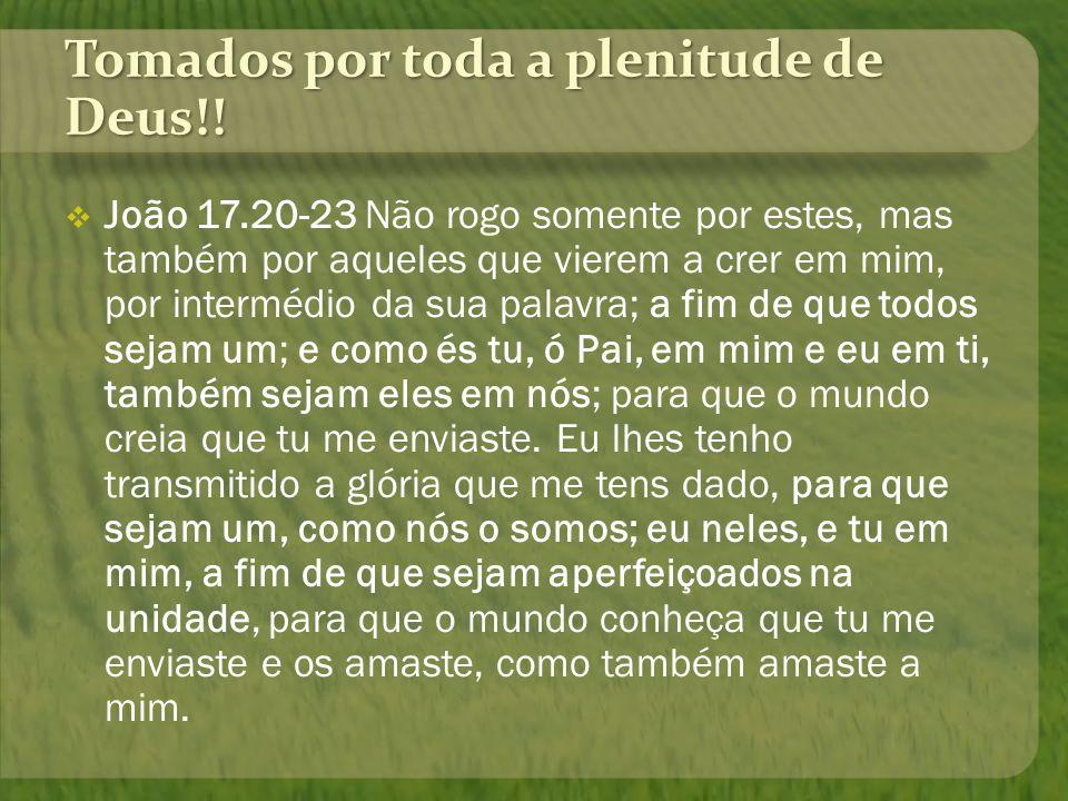 Tomados por toda a plenitude de Deus!! João 17.20-23 Não rogo somente por estes, mas também por aqueles que vierem a crer em mim, por intermédio da su