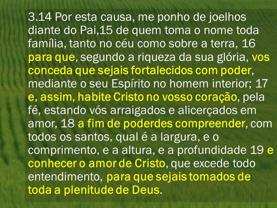 3.14 Por esta causa, me ponho de joelhos diante do Pai,15 de quem toma o nome toda família, tanto no céu como sobre a terra, 16 para que, segundo a ri