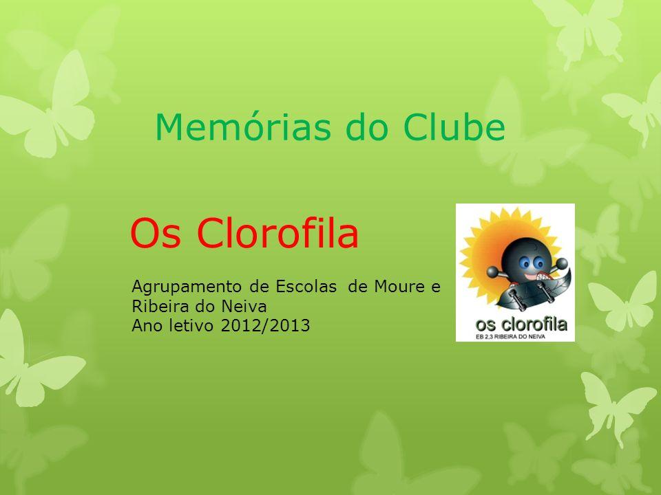 Memórias do Clube Os Clorofila Agrupamento de Escolas de Moure e Ribeira do Neiva Ano letivo 2012/2013