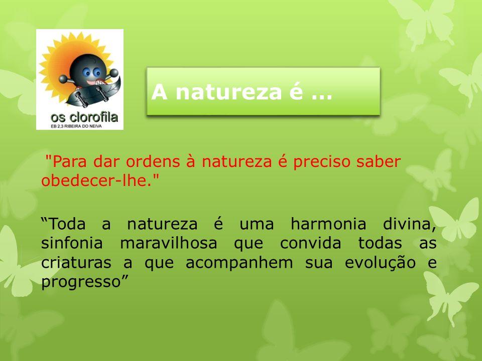 A natureza é … Toda a natureza é uma harmonia divina, sinfonia maravilhosa que convida todas as criaturas a que acompanhem sua evolução e progresso