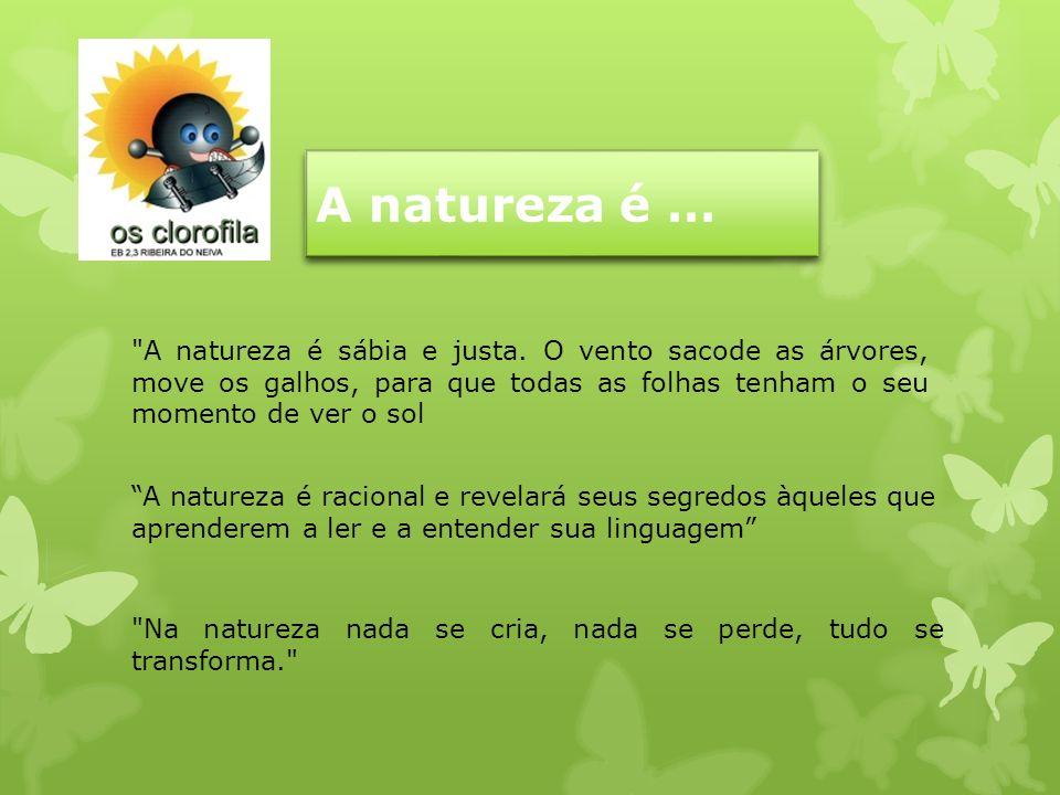 A natureza é … A natureza é racional e revelará seus segredos àqueles que aprenderem a ler e a entender sua linguagem