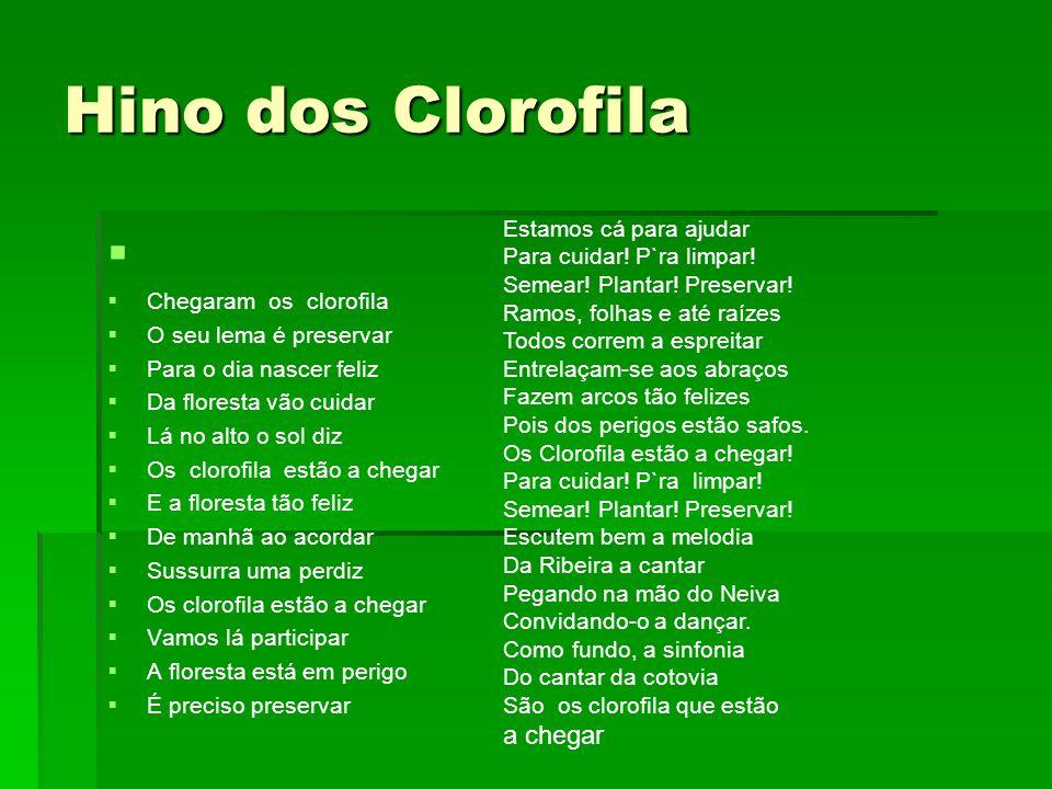 Hino dos Clorofila Chegaram os clorofila O seu lema é preservar Para o dia nascer feliz Da floresta vão cuidar Lá no alto o sol diz Os clorofila estão